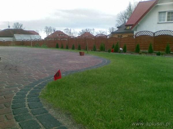 Trawnik 3