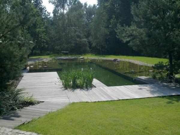 Zaprojektowany ogród 0
