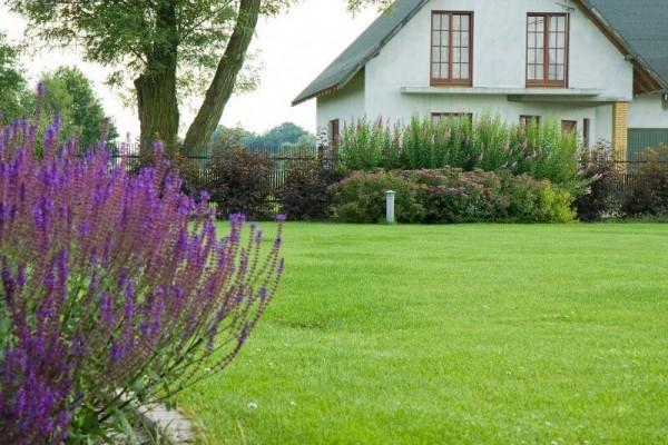 Zaprojektowany ogród 14