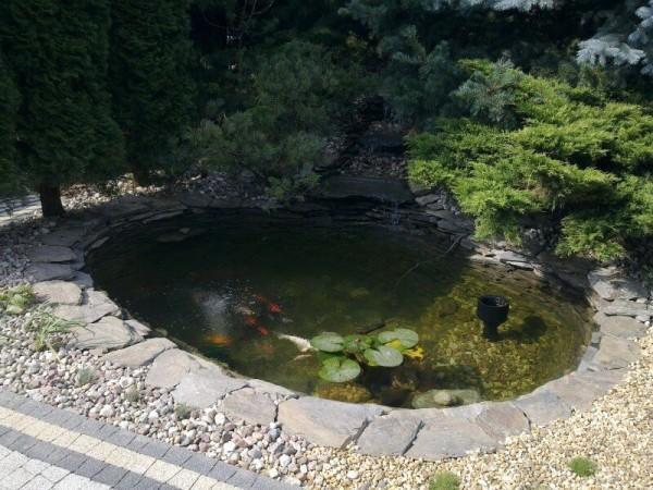 Zaprojektowany ogród 17