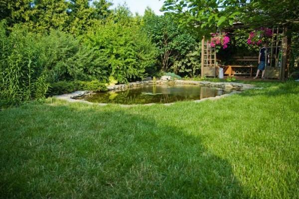Zaprojektowany ogród 23