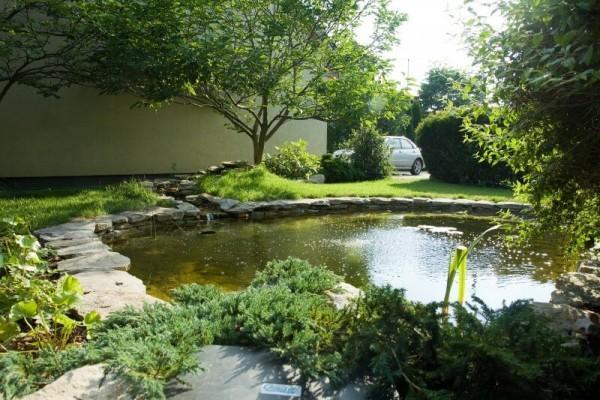 Zaprojektowany ogród 24