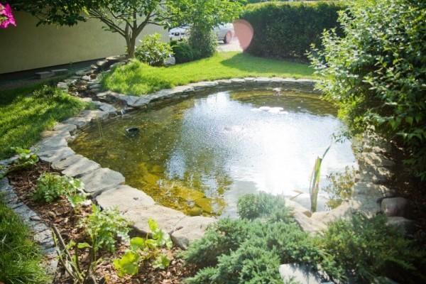 Zaprojektowany ogród 25