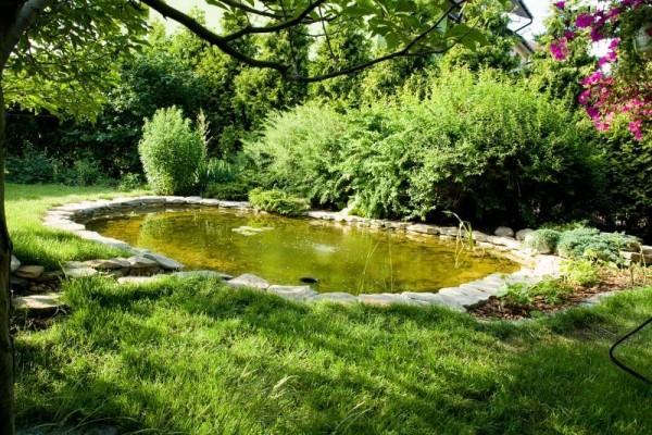 Zaprojektowany ogród 26