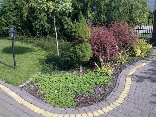 Zaprojektowany ogród 28
