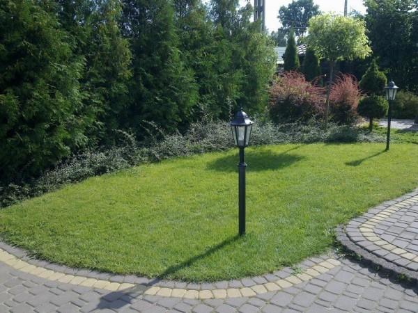 Zaprojektowany ogród 29