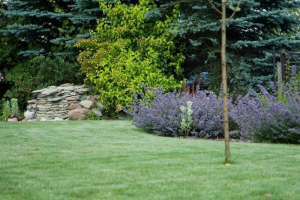 Zaprojektowany ogród 32